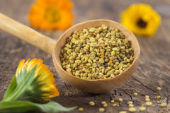 Bee pollen in the spoon on wooden background stock image