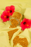 Bee pollen still life Royalty Free Stock Images