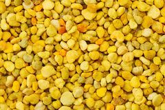 Bee Pollen texture Stock Photography