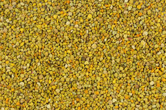 Bee Pollen texture natural background apiculture Royalty Free Stock Photo