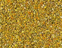 Bee Pollen texture natural background apiculture Stock Image