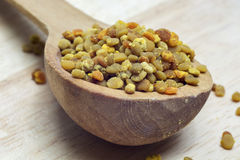 fresh bee pollen granules in wooden spoon royalty free stock photos