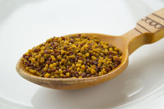 Bee pollen in wooden spoon. Macro photo of bee pollen stock photo