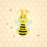 Bee queen in the hive Royalty Free Stock Image