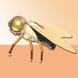Bee queen. With wood wings gilded head Royalty Free Stock Photo