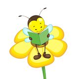 Bee Reading on Flower Stock Images