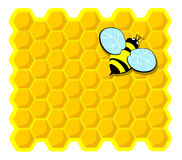 Bee resting on top of the comb. Vector illustration depicting a bee resting on top of the comb Royalty Free Stock Images