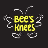 Bee`s knees - inspire and motivational quote.Hand drawn funny lettering. stock illustration