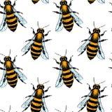 Bee seamless pattern Stock Photo