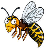 Bee with serious face. Illustration Stock Photos