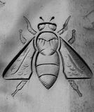 The bee. Shot in black and white. Sculpture placed on the facade of this historic building, representing a bee. Set in Eixample, Barcelona, Catalunya, Spain Royalty Free Stock Photos