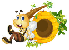 A bee sitting beside the beehive Stock Photography