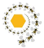 Bee Spiral Royalty Free Stock Photos