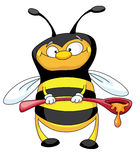 Bee with a spoon. An illustration of a little bee with the big spoon full of honey Stock Images