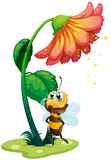 A bee standing under the big flower Royalty Free Stock Photos