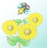 Bee and sunflower. Illustration of bee flying on sunflower Stock Photography