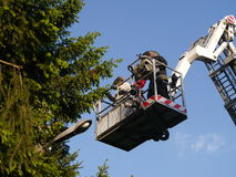 Bee swarm and fire brigade Stock Photography