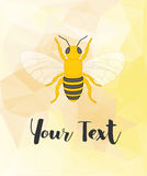 Bee Template Royalty Free Stock Images