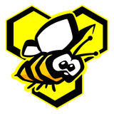 Bee vector illustration. Funny bee on honeycomb vector illustration Royalty Free Stock Photo