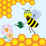 Bee watering the flowers Royalty Free Stock Images
