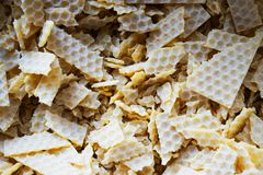 Bee Wax Texture Stock Image