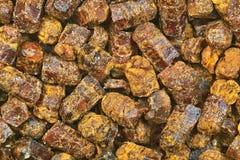 Beebread macro. Natural beebread granules macro image Stock Photos
