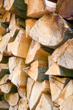 Beech firewood Royalty Free Stock Image