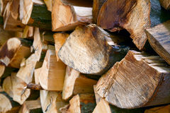 Beech firewood Stock Photography
