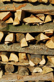 Beech logs Royalty Free Stock Photography