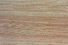 Beech wood laminate texture. Background Stock Images