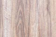 Beech wood texture background, wood texture with natural pattern Stock Image