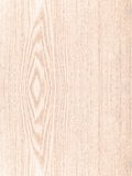 Beech wood texture, texture of wood background closeup. Royalty Free Stock Photo
