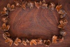 Beechnuts drewniany tło obraz stock