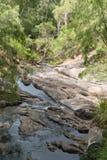 Beedelup国家公园,西澳州 库存照片
