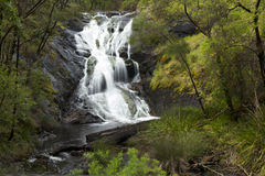 Beedelup falls. Scenic view of Beedelup falls in National Park, Western Australia Stock Image