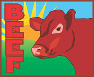 Beef. A great graphic for advertising your beef related sale Stock Photography