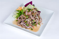 Beef And Onion Salad Royalty Free Stock Images