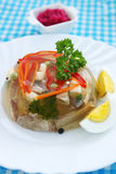 Beef  aspic Royalty Free Stock Photos