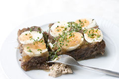 Beef aspic with eggs Royalty Free Stock Images