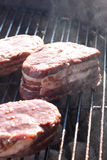 Beef on the barbecue Stock Images
