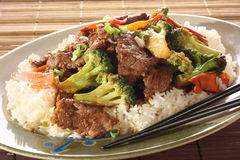 Beef and broccoli chicken. royalty free stock images