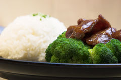 Beef Broccoli with Rice Stock Images