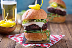 Beef burger with vegetables and cheese Stock Photos