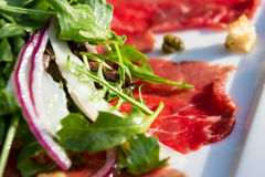 Beef carpaccio. Close up of a beef carpaccio appetizer served with an arugula salad as a garnish royalty free stock photography
