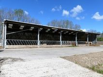 Beef cattle farm shed, Chorleywood, Hertfordshire stock photography