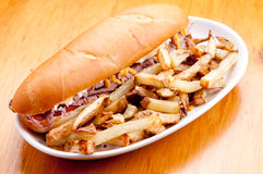 Beef and cheddar sandwich with fries Stock Images