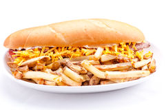Beef and cheddar sandwich with fries Stock Photos