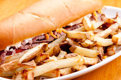 Beef and cheddar sandwich with fries. Beef and cheddar sandwich with hand cut french fries Stock Images