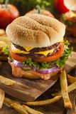 Beef Cheese Hamburger with Lettuce Tomato. And Onions Royalty Free Stock Photography