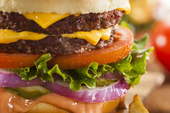Beef Cheese Hamburger with Lettuce Tomato. And Onions Stock Photo